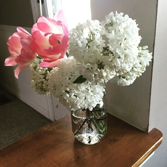 Some of the beautiful flowers Matt picked from our garden this month!