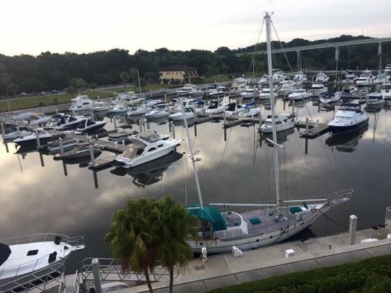 Yacht Harbor