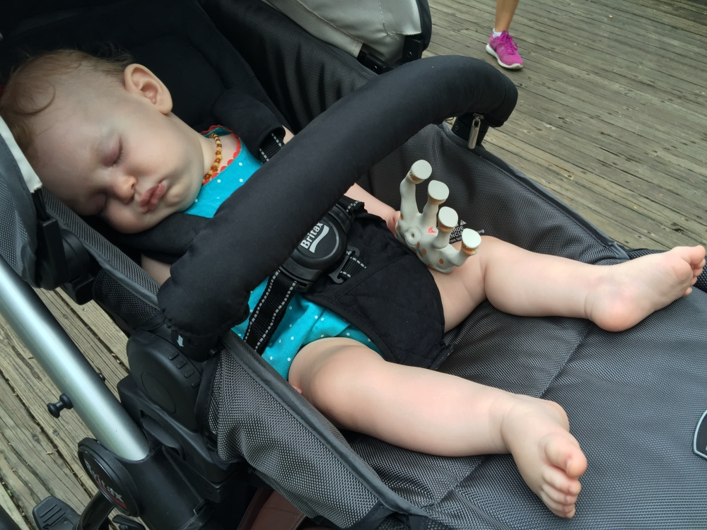 Ending her first trip to the zoo in style - with a good nap!