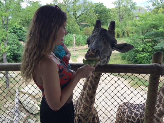 Feeding the Giraffes for the first time at the zoo!