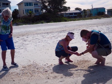 Sea Shelling!